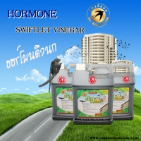 087 HS-5 Swiftlet Vinegar 4 L