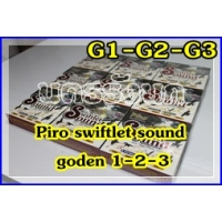 181 Piro Internal sound G1-2-3